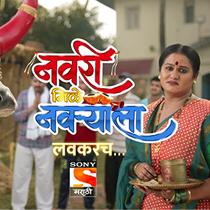 navri-mile-navryala-poster
